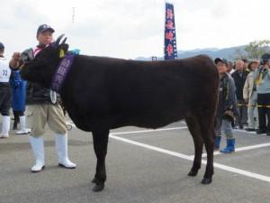 himeyuki5-2